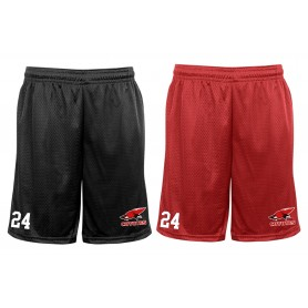 Denain Coyotes - Custom Embroidered Mesh Shorts