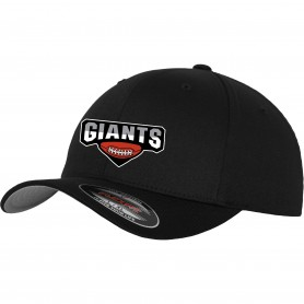 North East Academy - Embroidered Flex Fit Cap