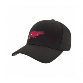 HACL Raptors - Embroidered Flex Fit Cap