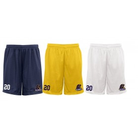 Lincoln Colonials - Custom Embroidered Mesh Shorts
