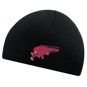 HACL Raptors - Embroidered Beanie Hat